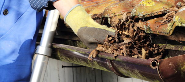 Clean-Your-Gutters-Regularly